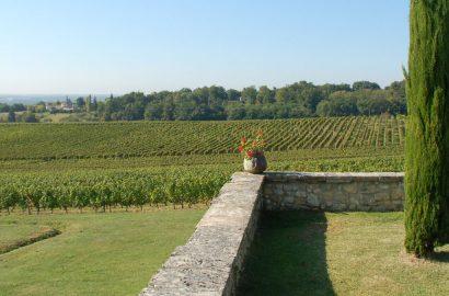 2015 Market Review of Bordeaux Vineyards