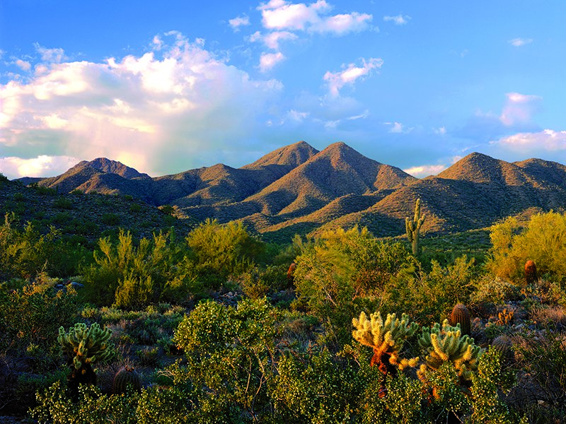 Scottsdale borders the McDowell Mountains, and they are just one of the places outdoor enthusiasts can enjoy in the area. Photograph and banner image courtesy of Scottsdale Convention & Visitors Bureau.