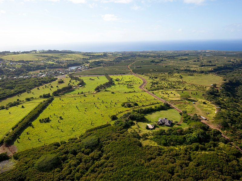 Brydeswood Ranch is now being offered as a bulk sale of 272 acres. There are 23 subdivided lots ranging from four to 17 acres, with a total density of 84 home sites, being sold together.