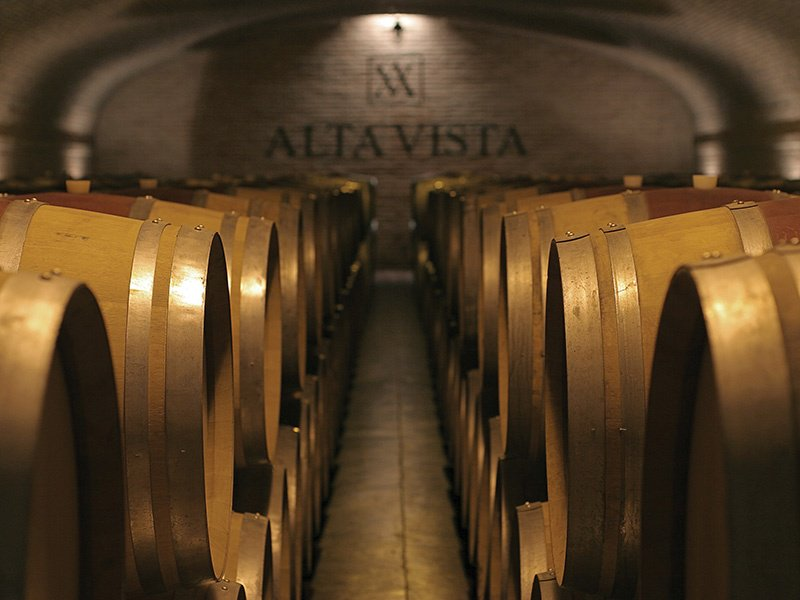 The flagship wine of Jean-Michel Arcaute's Argentinian Alta Vista winery, Alto, sold for just US$20 upon its debut in 1998. It now fetches upwards of US$350 per bottle at auction.