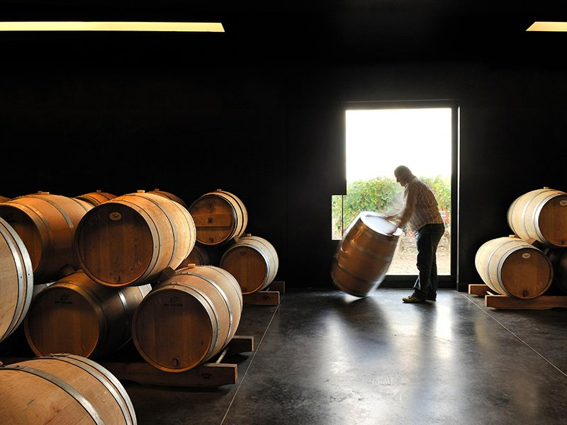 Château Petit-Village in Pomerol has recently renovated its facilities and replanted the vineyards, with the aim of maximizing quality over the long term. Photograph: Alamy