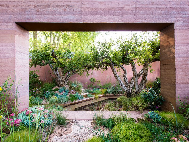 For her garden at the RHS Chelsea Flower Show, Sarah Price kept climate change in mind, using Mediterranean flora that are drought-tolerant. Photograph: Claire Takacs. Banner image: Kate Gould's New West End Garden, which uses kinetic energy to power features within the space. Photograph: Helen Ficking