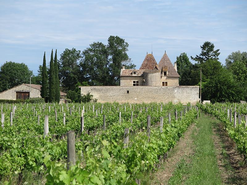 Château Villepreux Bordeaux Vineyard