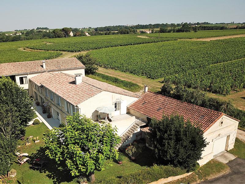 Clos de la Barbanne vineyard Bordeaux