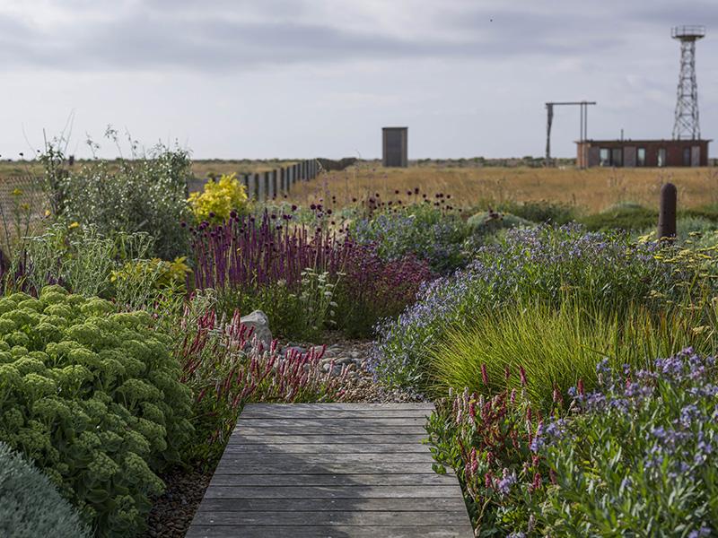 Garden overlooking desert landscape