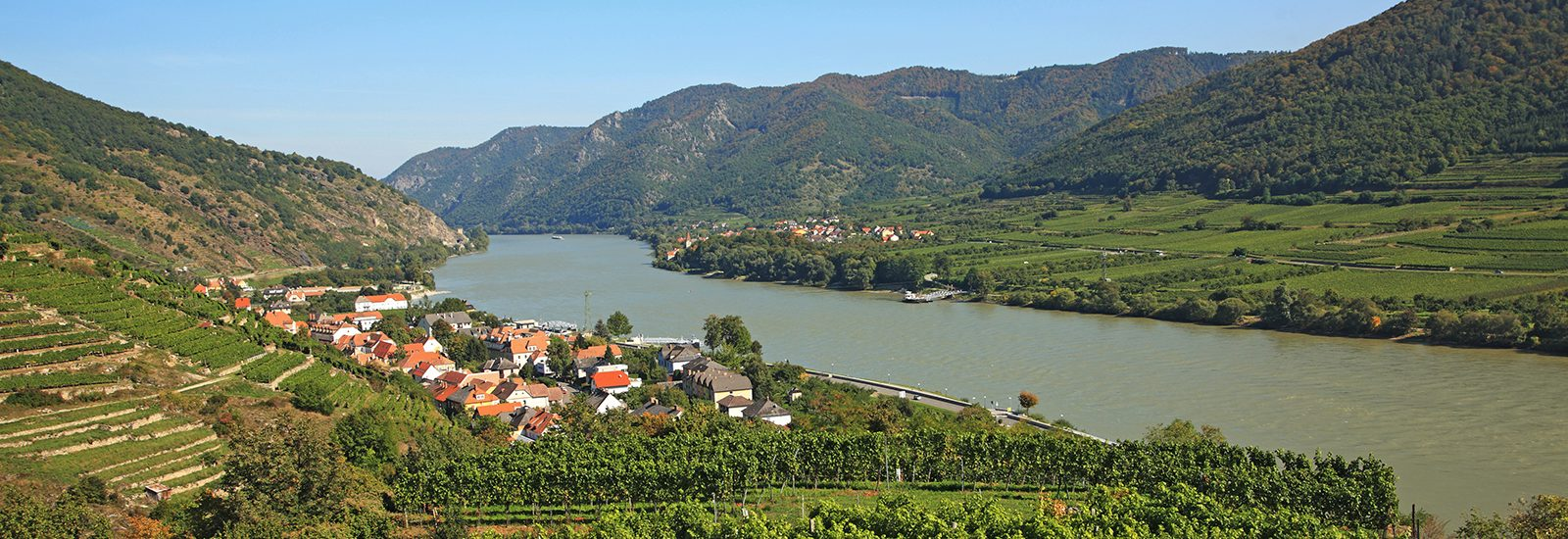 vineyards Wachau Valley Austria