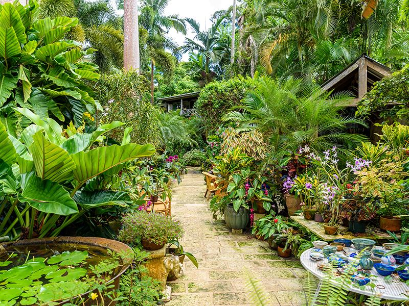 Huntes-Garden-Barbados