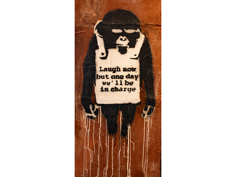 One of Banksy's Laugh Now chimp series