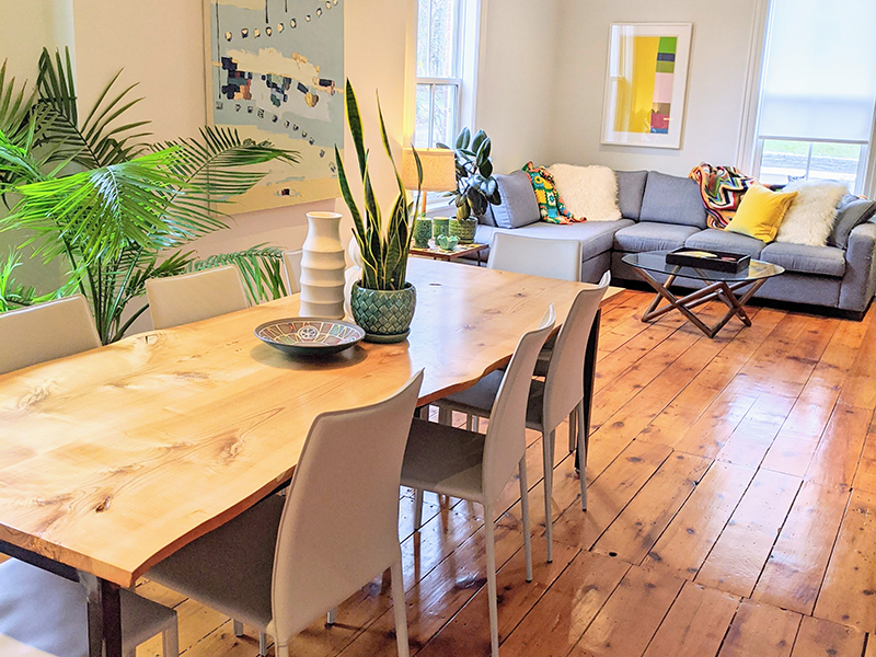 An open plan apartment filled with natural design elements