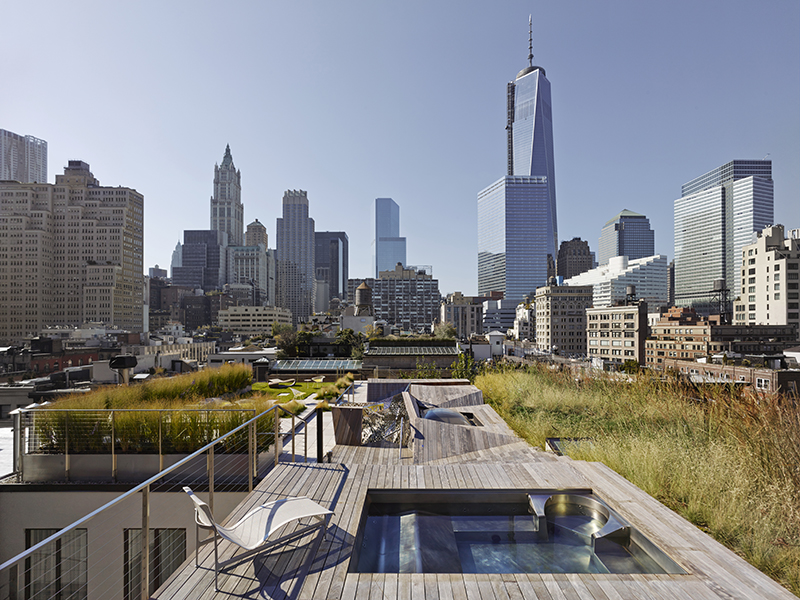 New York roof garden with swimming pool