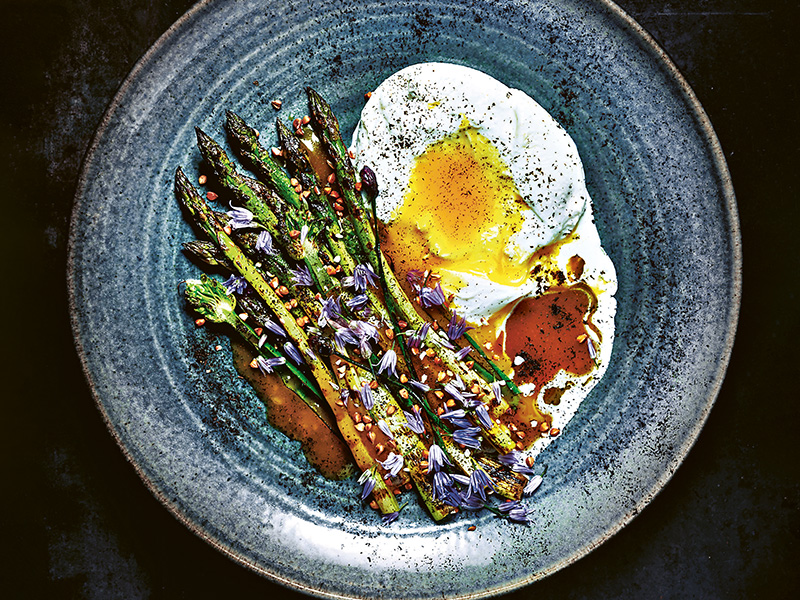 Plate of grilled asparagus and burrata cheese