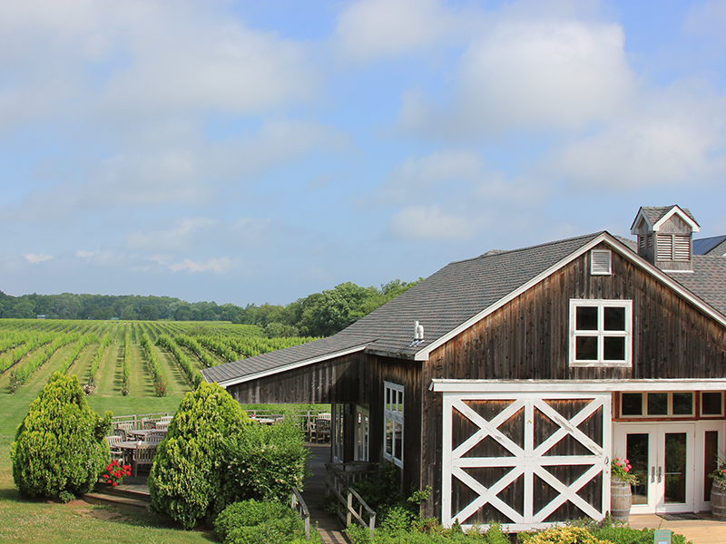 Paumanok Vineyards in Long Island, New York