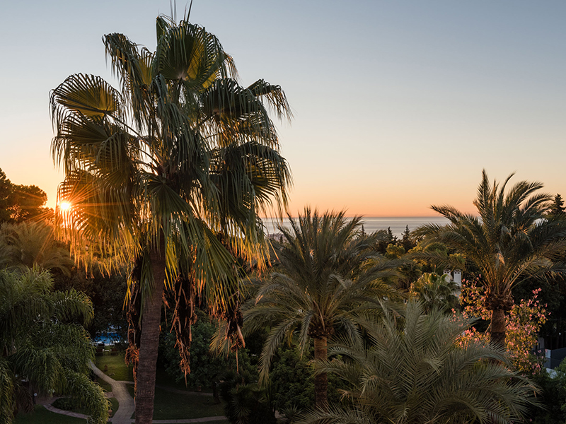 The view from Buchinger Wilhelmie's Marbella Wellness Clinic