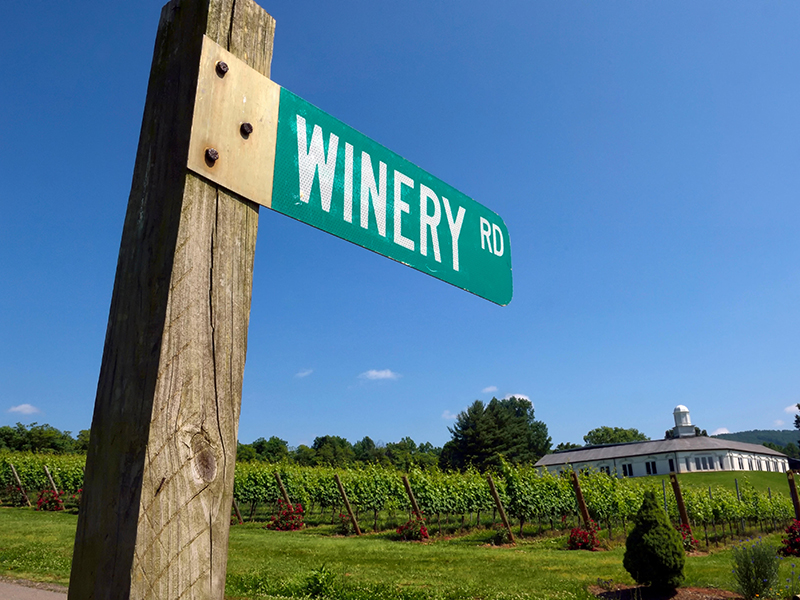 Winery Road. Barboursville Vineyards. Virginia. USA