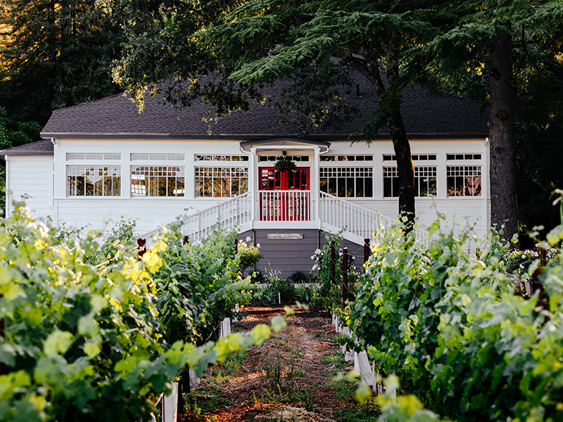 A vineyard and the winery at AXR in Napa Valley