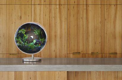 Green Daze: 6 Innovative Eco-Friendly Design Solutions
