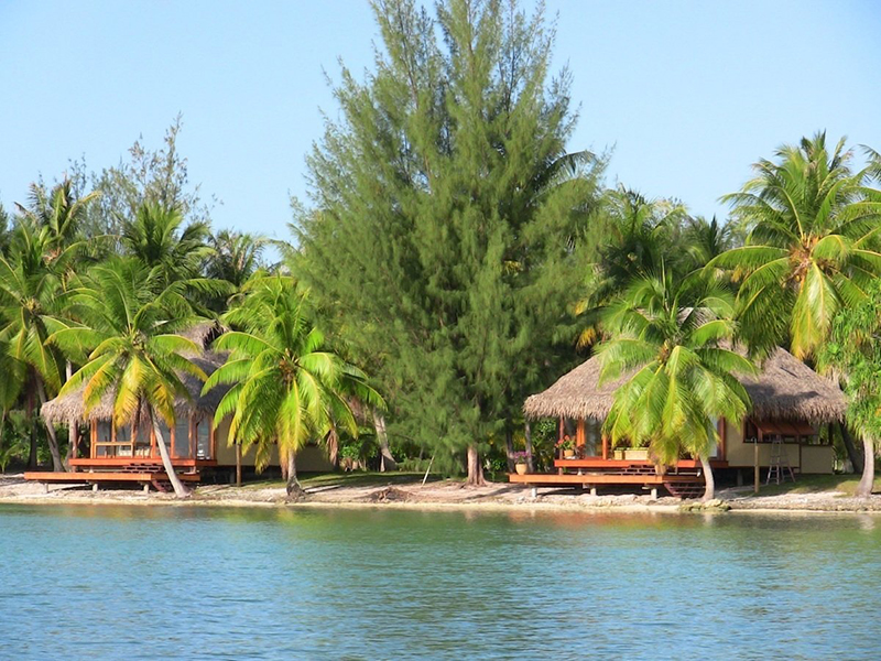 Bungalows along the shore on a palm covered island