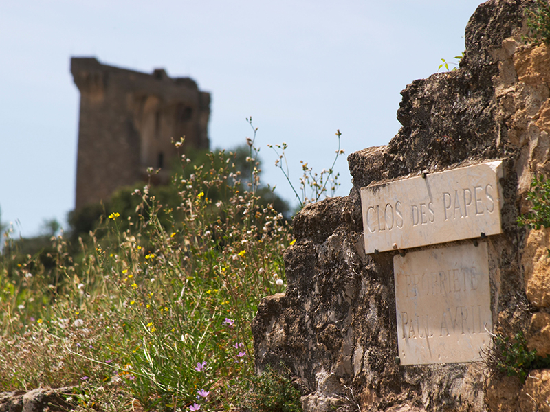 Ruins of the 14th-century papal castle, Clos des Papes. Image: Alamy
