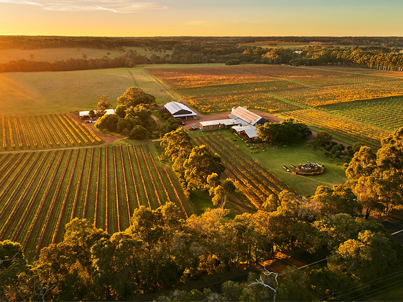 An aerial view of a winery and vineyards at sunset