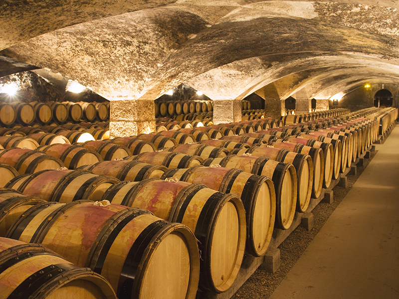 A cellar filled with champagne barrells