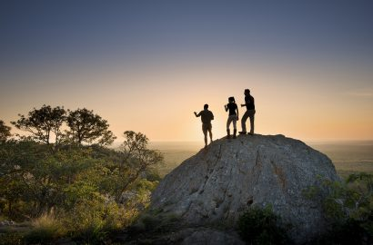Embrace Eco Travel with a World-Class Conservation Safari