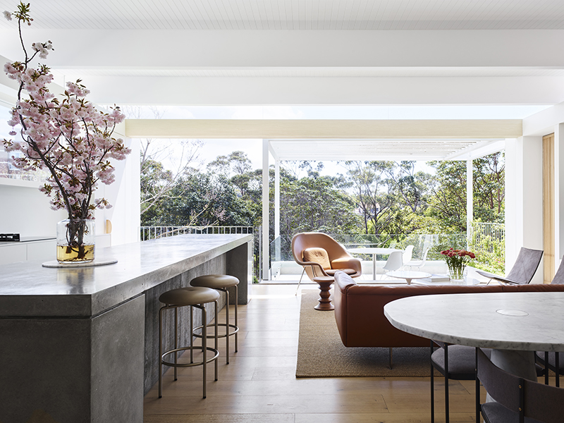 A living room with a wall of windows looking out onto treetops