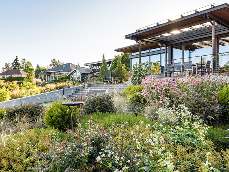 A flower-filled garden in front of a modern home
