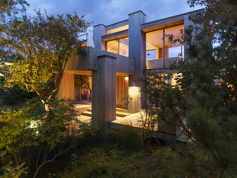 Trees surrounding the Modernist architecture of Fire Island House