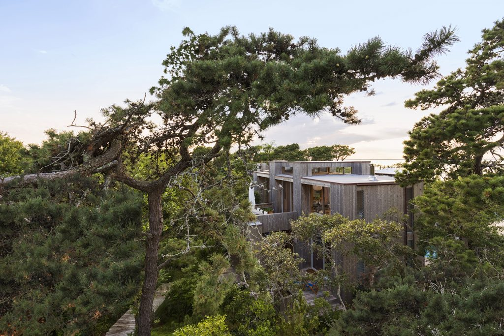 Trees Architecture Fire Island House