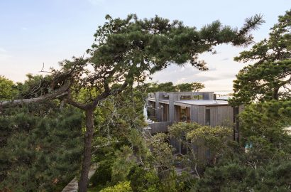 Growing Home: The Trees Making a Statement in Top Architecture