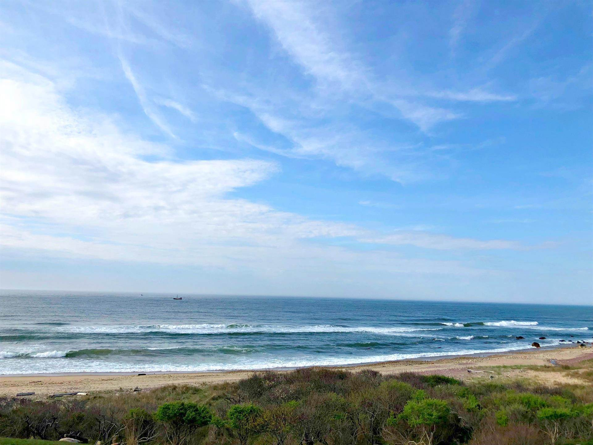 5. Single Family Home 용 매매 에 Montauk Oceanfront Paradise, 36 acres of Private Land Montauk, 뉴욕,11954 미국