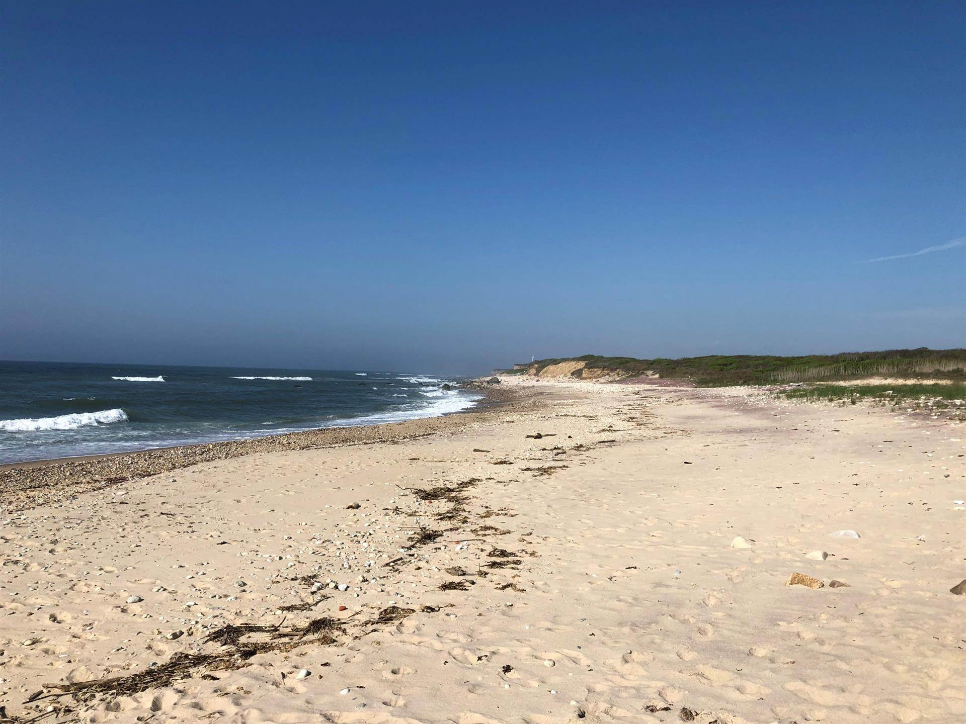 7. Single Family Home 용 매매 에 Montauk Oceanfront Paradise, 36 acres of Private Land Montauk, 뉴욕,11954 미국