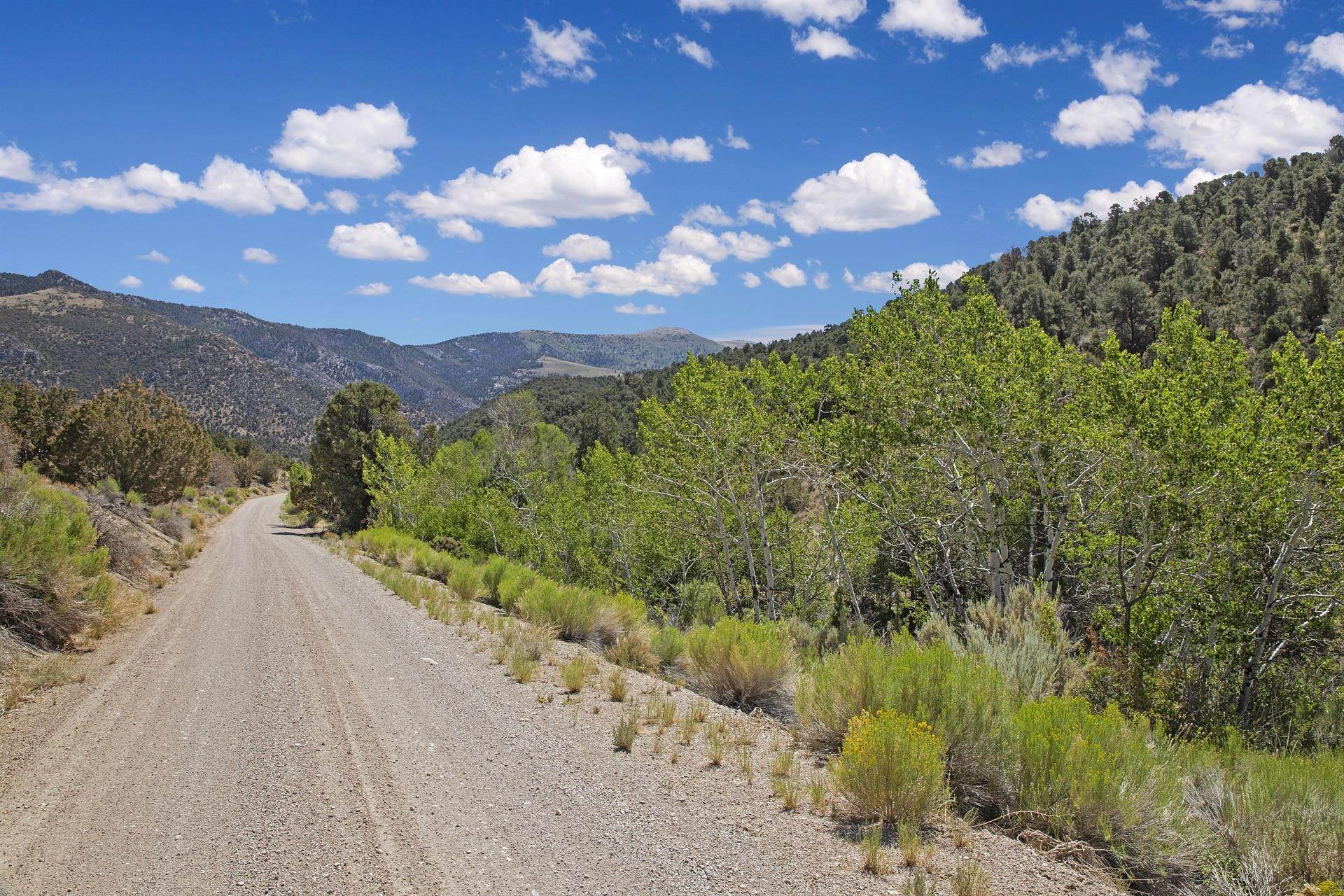 10. Land/Lot for Sale at Bird Creek Estates 5205 E BIRD CREEK Road, Ely, Nevada 89301 Ely, Nevada,89301 United States