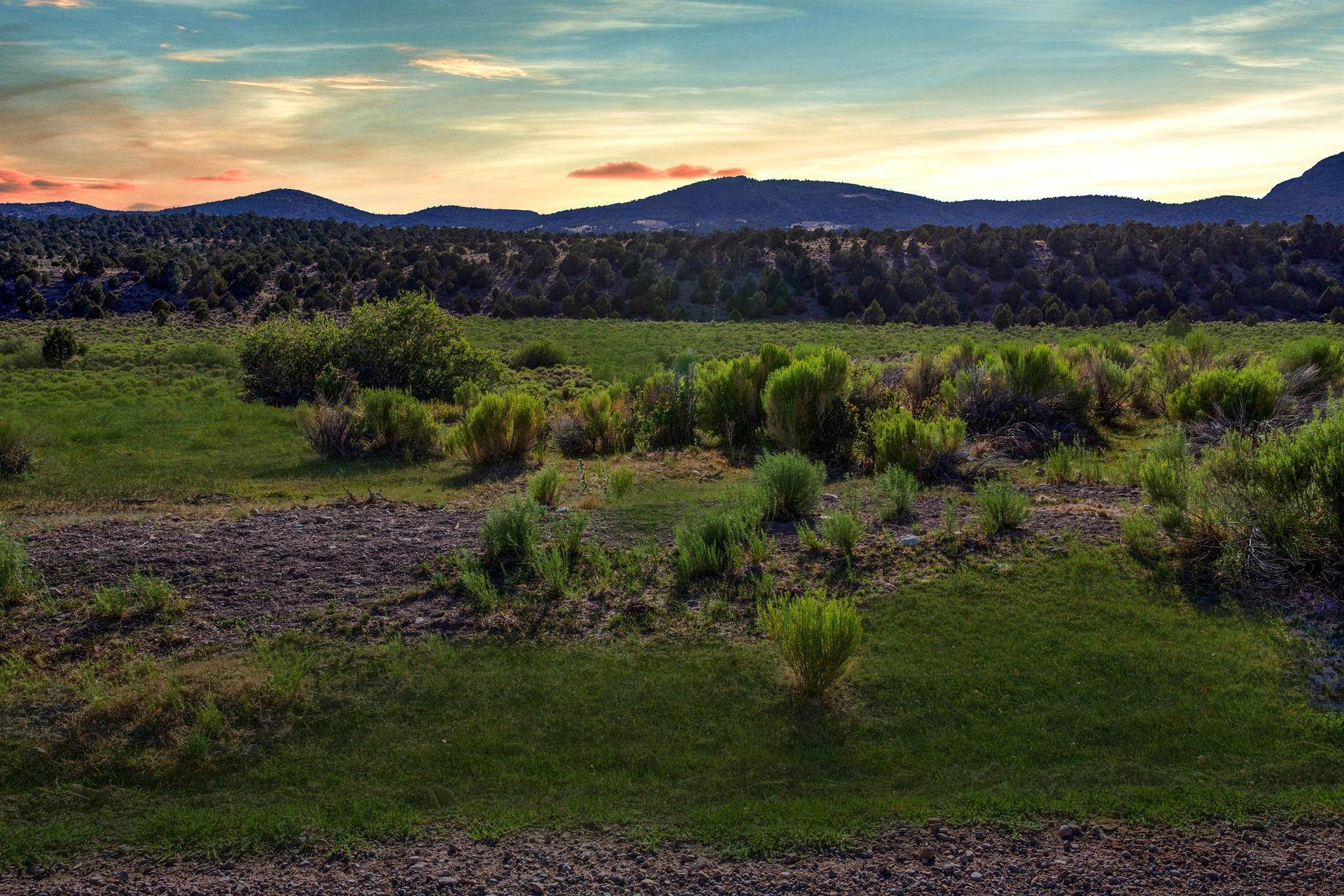 2. Land/Lot for Sale at Duck Creek Development Duck Creek Road, Ely, Nevada 89301 Ely, Nevada,89301 United States