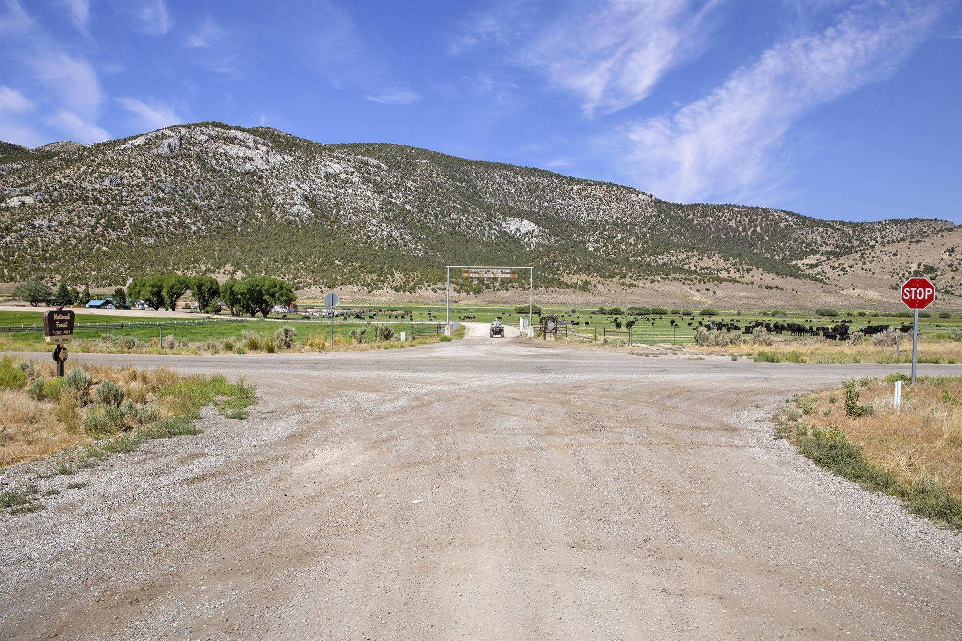 11. Land/Lot for Sale at Bird Creek Estates 5205 E BIRD CREEK Road, Ely, Nevada 89301 Ely, Nevada,89301 United States