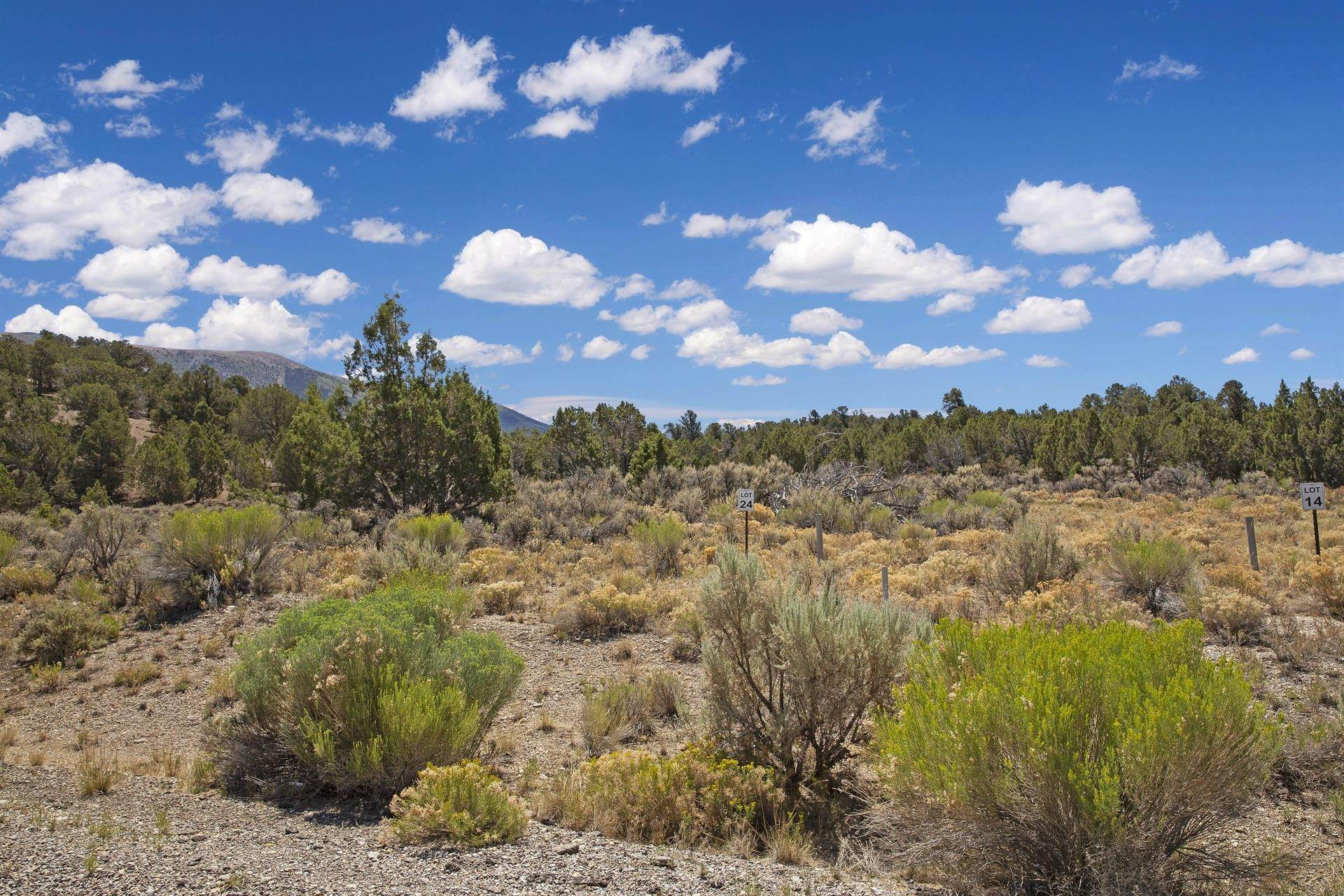 7. Land/Lot for Sale at Bird Creek Estates 5205 E BIRD CREEK Road, Ely, Nevada 89301 Ely, Nevada,89301 United States