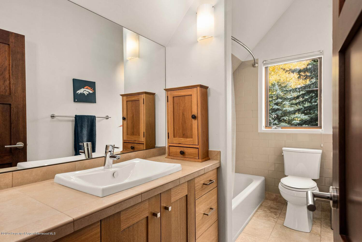 24. Single Family Home for Sale at 711 W Bleeker Street Aspen, Colorado,81611 United States