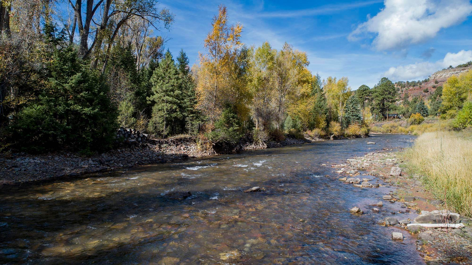 Land/Lot for Sale at 143A Stock Road Placerville, Colorado,81430 United States