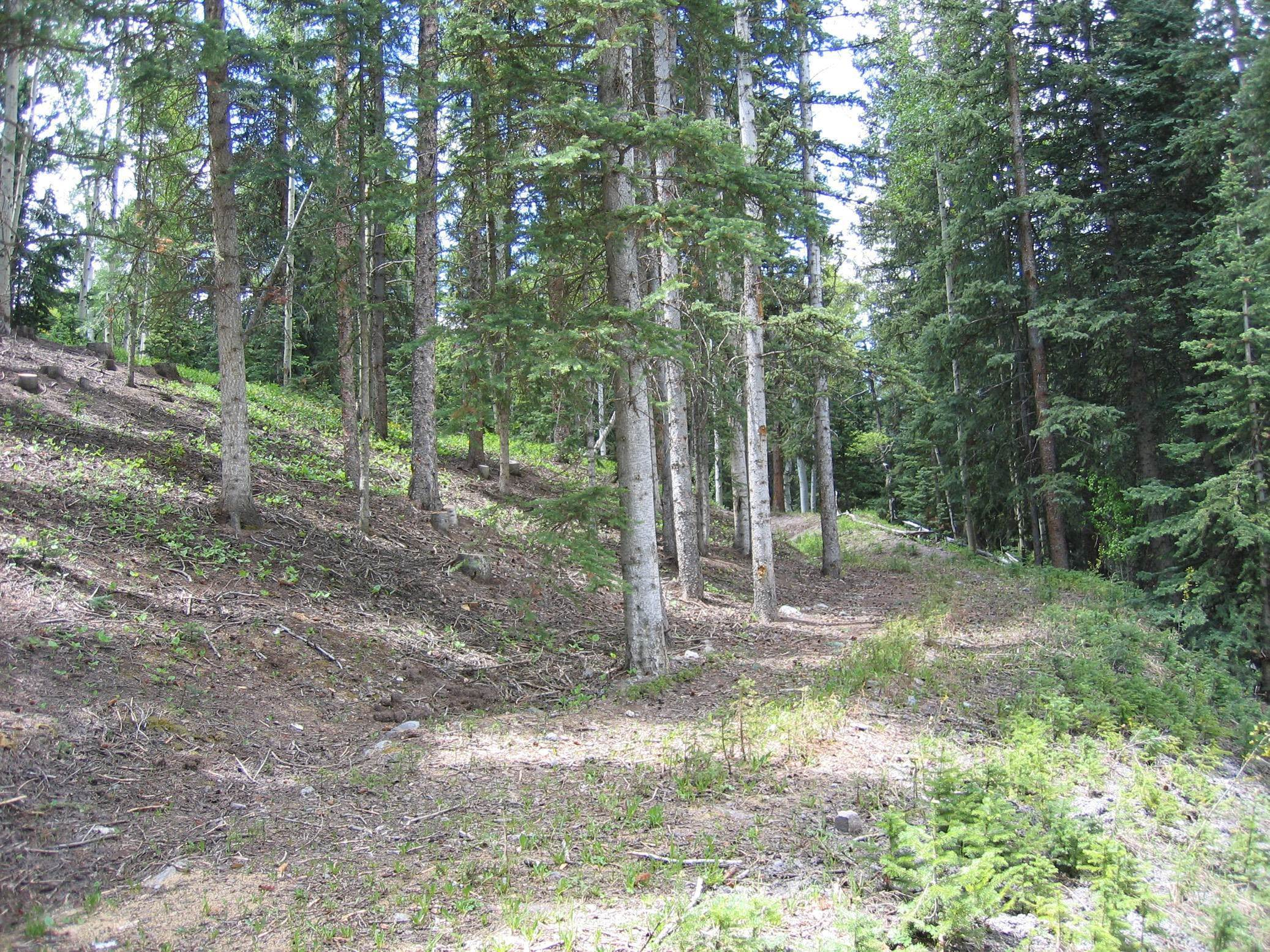 3. Land/Lot for Sale at TBD Palmyra Drive Mountain Village, Colorado,81435 United States