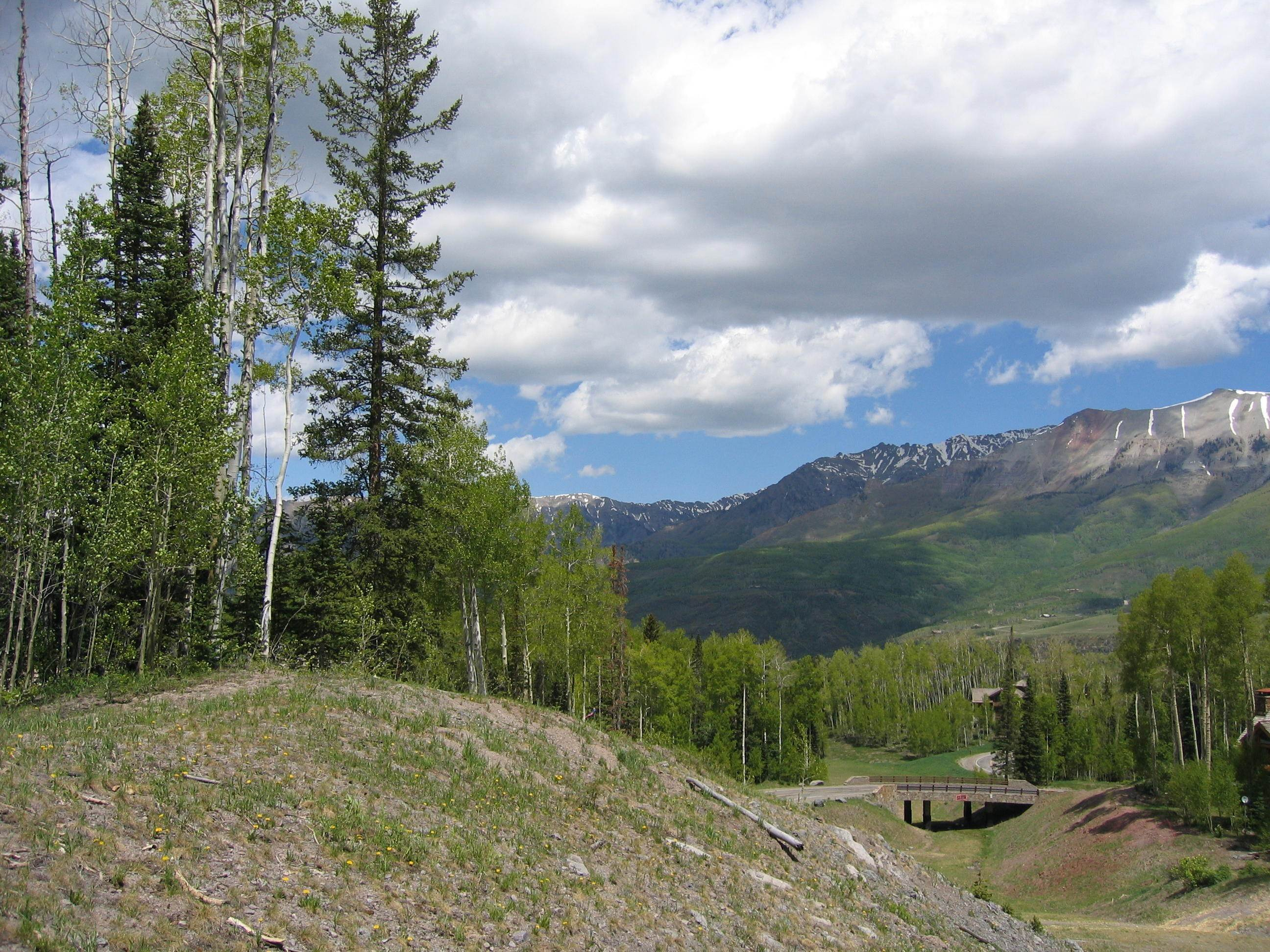 12. Land/Lot for Sale at TBD Palmyra Drive Mountain Village, Colorado,81435 United States