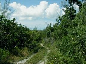 Land/Lot for Sale at Maury Tract Abaco, Bahamas