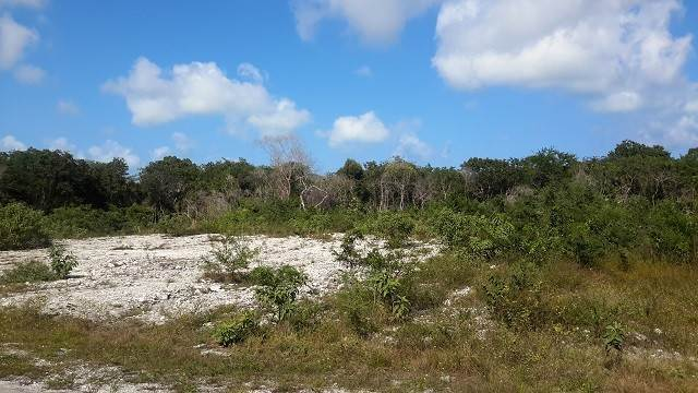 Land/Lot for Sale at 180 Acres - Investment Property - Alexander, Exuma Exumas, Bahamas