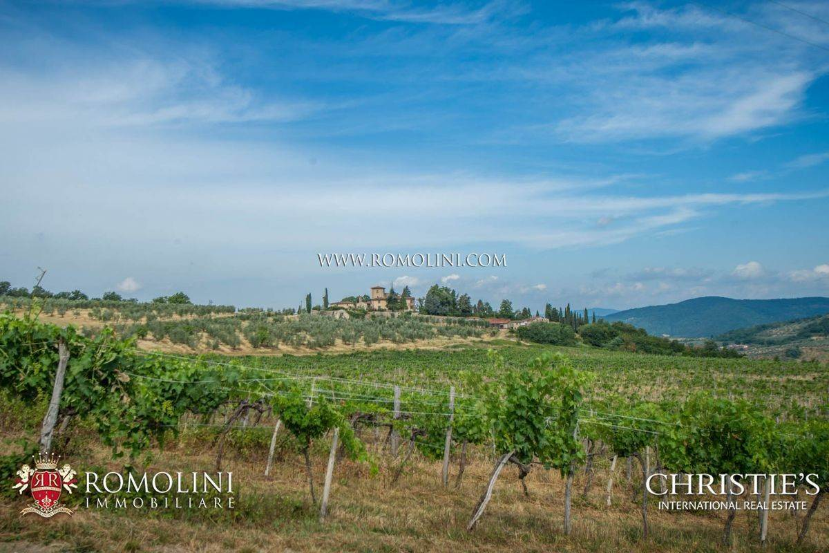 Vineyard for Sale at Chianti - STUNNING ESTATE WITH CHIANTI COLLI FIORENTINI WINERY FOR SALE Firenze, Italy