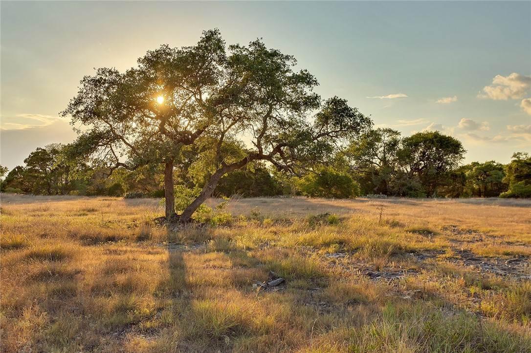 Купить ранчо в техасе недвижимость портралии