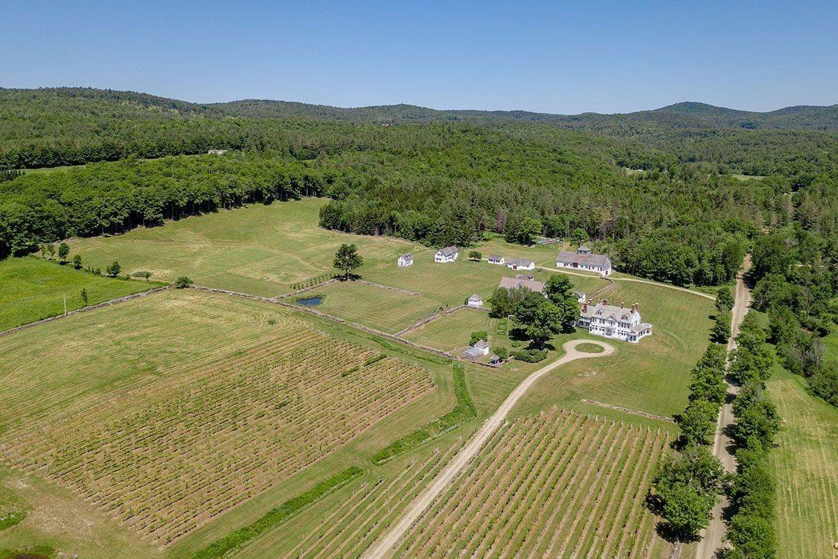 32. Single Family Home pour l à vendre à Brook Farm Vineyards 4203 Twenty Mile Stream Rd Cavendish, Vermont,05153 États-Unis