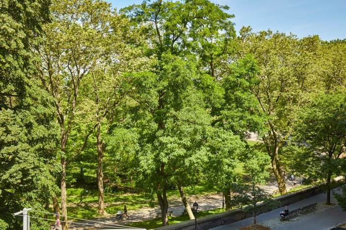 12. Multi Family Townhouse for Sale at Carroll Mansion 86 Riverside Drive New York, New York,10024 United States
