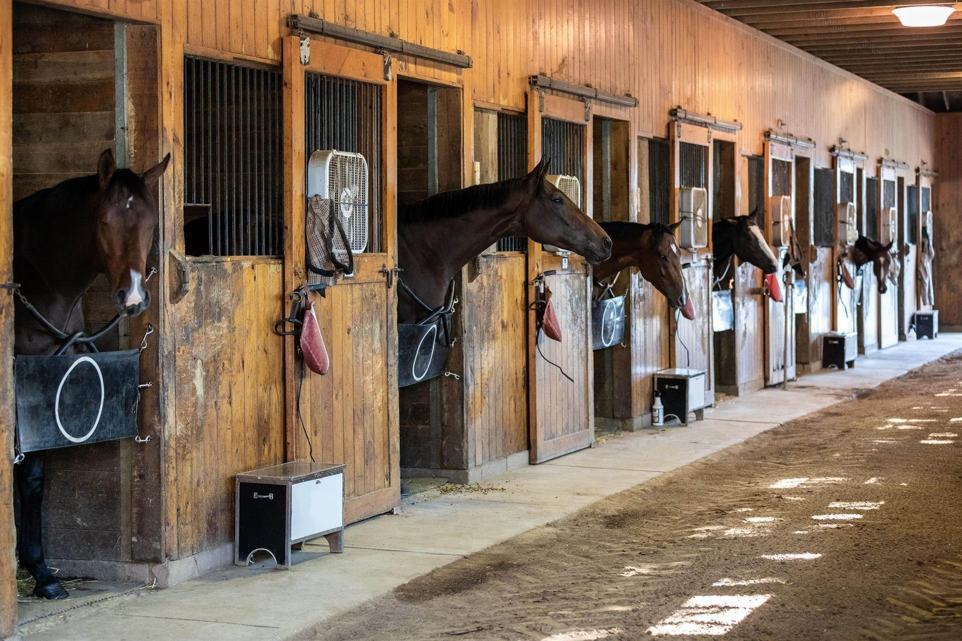 45. Horse Property for Sale at Stonewall Farm, A Magnificent 740 Acre Estate in Westchester County New York, United States